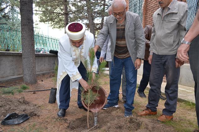 Eskisehir'de Camiler Haftasında Yüzlerce Fidan Dikildi