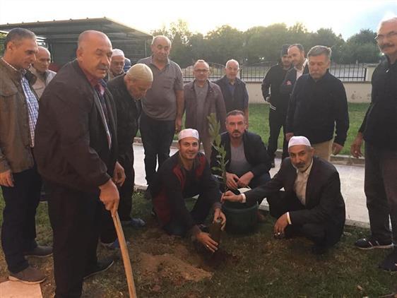 Manisa'da Camiler Ve Din Görevlileri Haftası ''ağaç Dikimi Kampanyası''