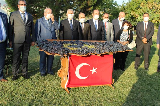 Tekirdağ'da Il Müftüsü Ipek, Bağbozumu Etkinliğine Katıldı.