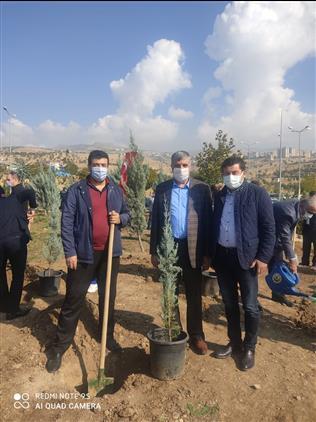Şırnak'de Ilimizde 7 Ayrı Lokasyonda 68.550 Adet Fidan Toprakla Buluşturuldu